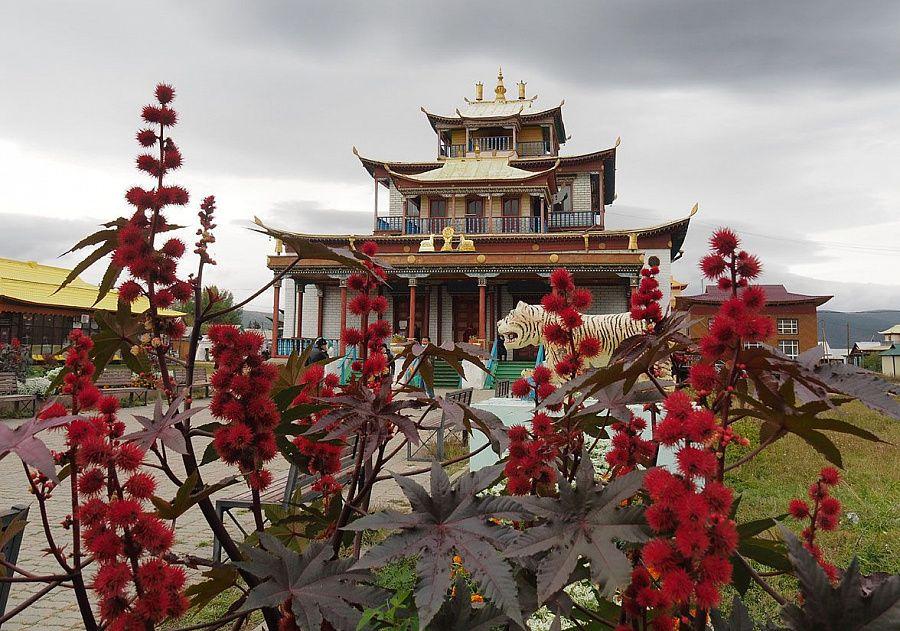 День поклонения Пандито Хамбо ламе Этигэлову в Бурятии собрал мастеров прикладного искусства